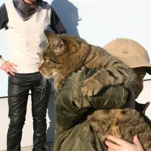Beim Fotoshooting wollte sich mein Kleiner samt Katze auch in Szene setzen